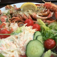 Salad with grilled fresh lobster